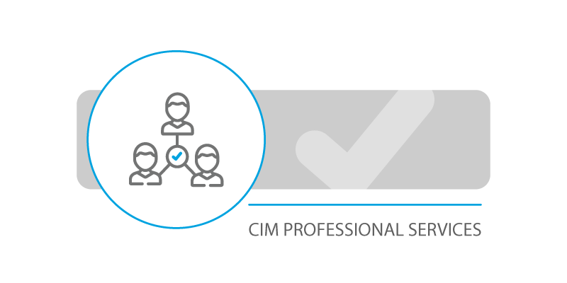 CIM Professional Services Image